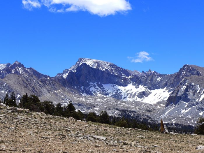 Mount Whitney from Bighorn Plateau
